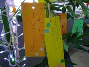 20150701高砂保育園さま (24)-thumb-350x262-2674